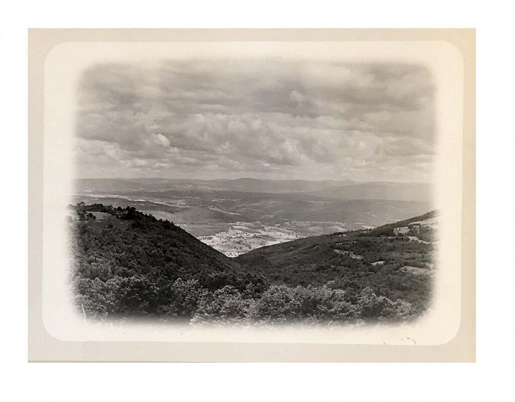 L.W. Botsford